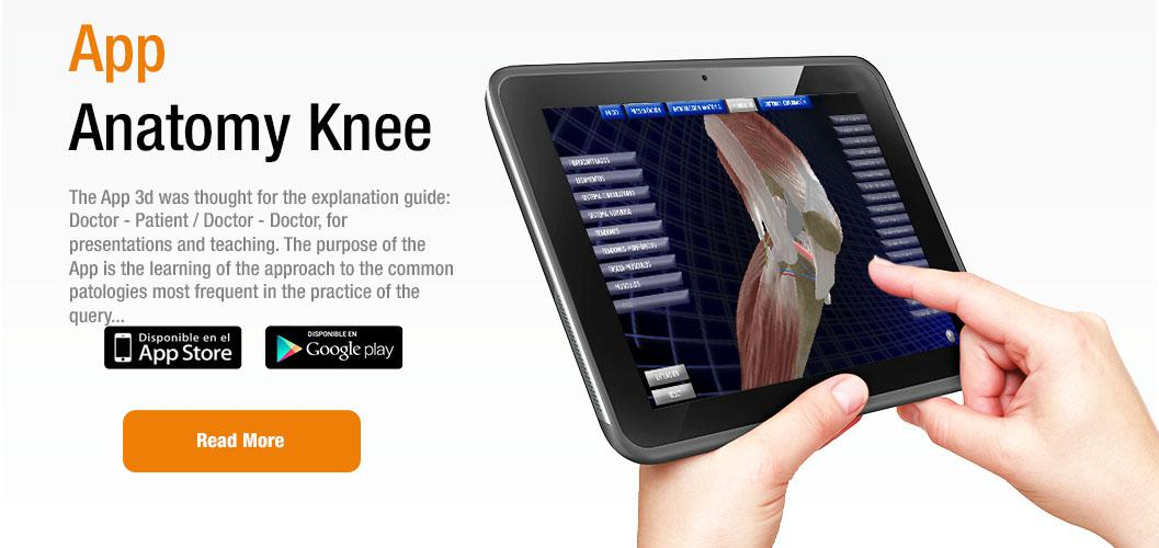 App Anatomy Knee